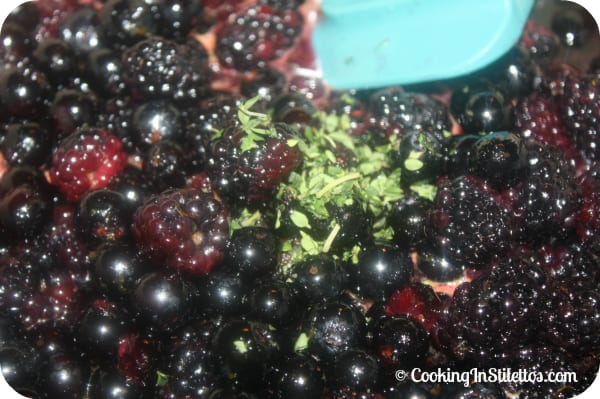 Black and Blue Thyme Jam - Adding a Bit of Thyme   Cooking In Stilettos